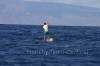 2010-maui-to-molokai-challenge-016