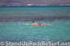2012-wet-feet-blue-planet-surf-wpa-hawaii-regional-championships-race-005