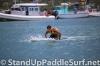 2013-molokai-2-oahu-paddleboard-race-034