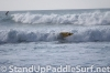 2013-stand-up-world-series-at-turtle-bay-day-2-sprint-races-wipeouts-17