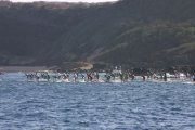 2010-molokai-to-oahu-race-recap-by-connor-baxter-03