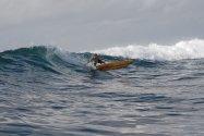 starboard-tac-sup-board.jpg