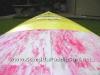 Dennis-Pang-12-6-SUP-Racing-Board-10.JPG